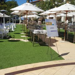Artificial Turf, Synthetic Turfs for Landscaping by Smart Turf