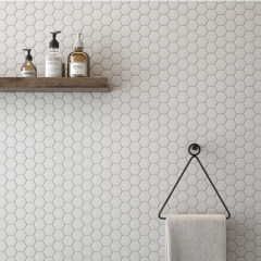 Hexagonal Mosaic Room Scene